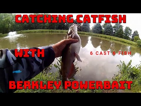 Catching Catfish With Berkley Powerbait/ Dough Bait / 6 Cast 6 Fish
