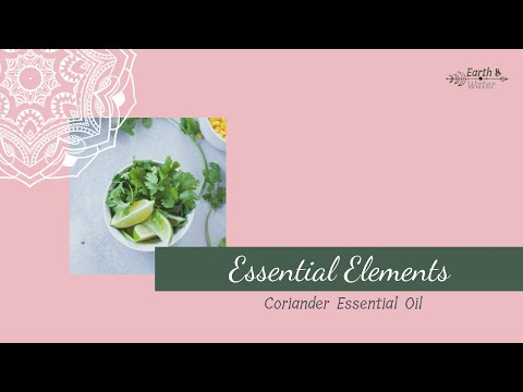 what-is-coriander-essential-oil?-what-do-i-do-with-it?-what-are-it's-benefits?