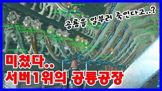 충격적인..서버1위 부족의 공룡육아 【아크 공식 PVP서버 63화】 [아크 서바이벌 이볼브드]