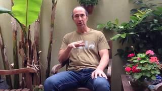 Theta333®  El Levitasyonu - (Bilinçaltı Temizleme Tekniği)