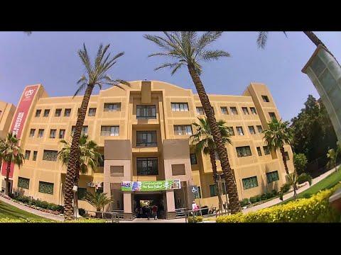 Best College In Egypt ? not MIU