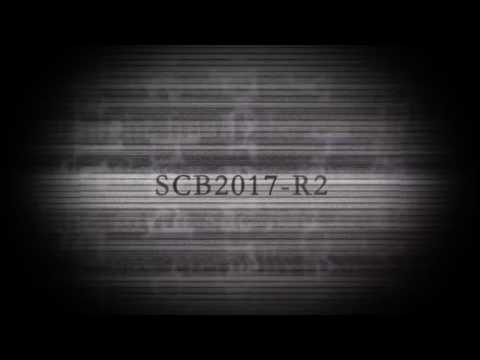 【SCB2-R2】フィクサー / Fixer【cafe holoholona】