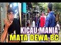 Kicau Mania Mata Dewa Bc Mojokerto  Mp3 - Mp4 Download