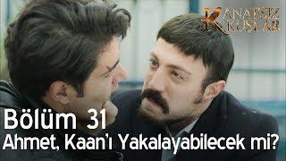 Kanatsız Kuşlar 31. Bölüm - Ahmet, Kaan'ı yakalayabilecek mi?