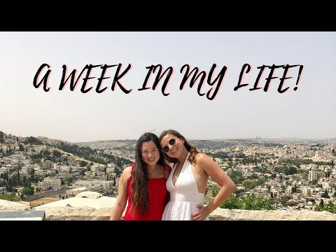 STUDYING ABROAD IN ISRAEL! (NORTHEASTERN UNIVERSITY))