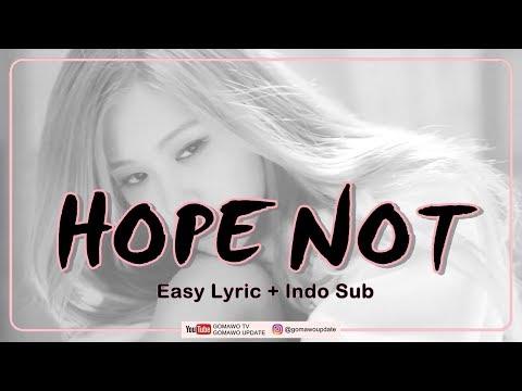 Easy Lyric BLACKPINK - HOPE NOT By GOMAWO [Indo Sub]