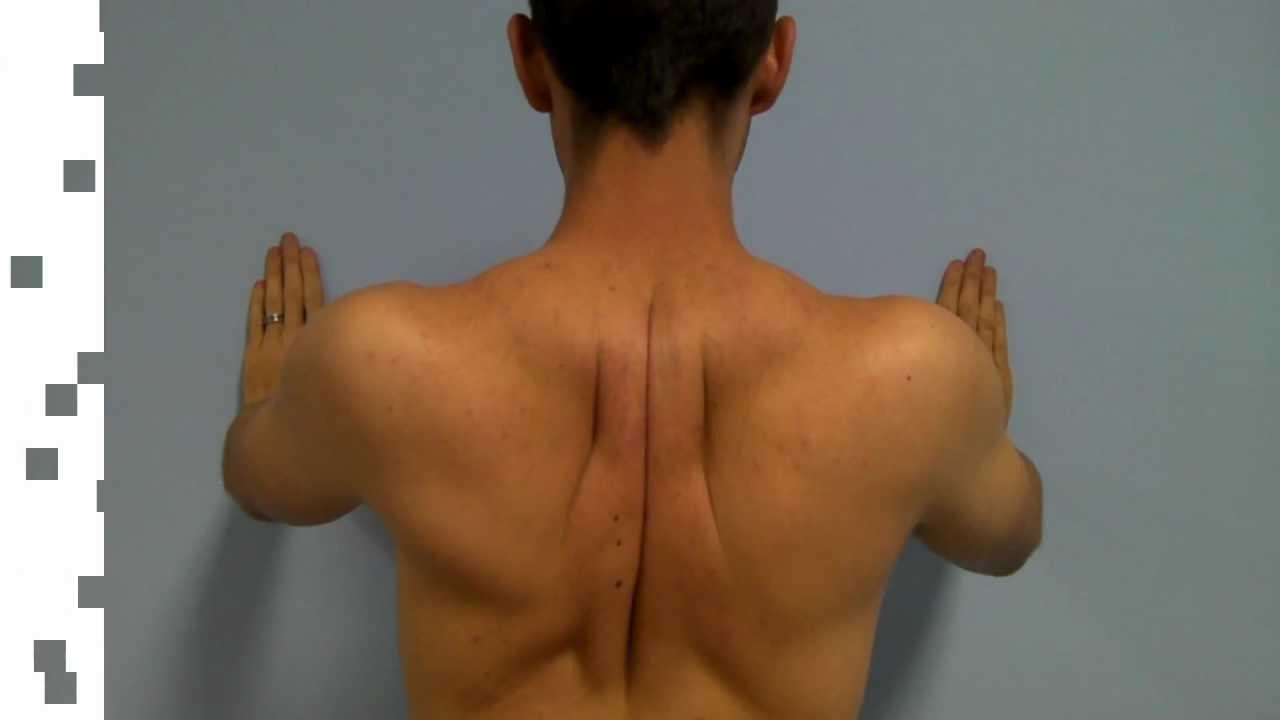 Back Pain Between the Shoulder Blades - PainChiropractor com