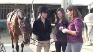 Horseback Riding Basics