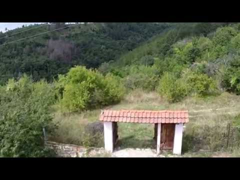 Live Ebay Bulgarian property auction by Bulgariadirect