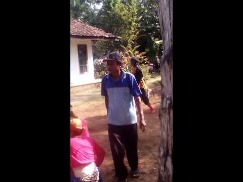 Turonggo Karyo Patimuan