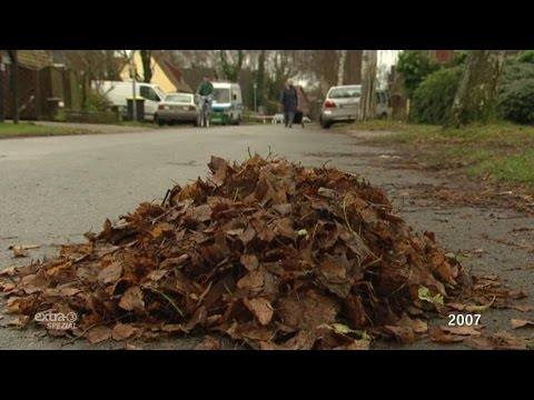 Realer Irrsinn: Grabenlaub und Straßenlaub | extra 3 | NDR