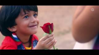 Happy Valentines Day 2019|Zifran Nizam|Zifru