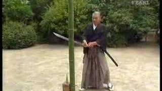 Great tameshigiri by Ueki sensei