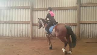 Jasmine Graham - Evidence of Riding Ability