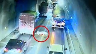 Runaway pig causes two accidents in tunnel in SW China