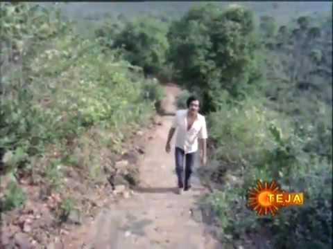 Kokilamma movie Vidio song palavinchana na vkt