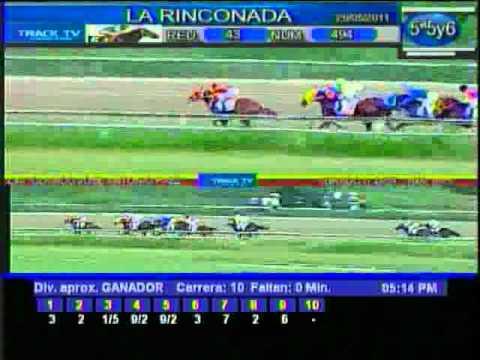 Clásico José Antonio Páez 2011 (Gr. 1) - La Rinconada