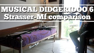 Musical didgeridoo 6: Multi Frequency/Strasser comparison