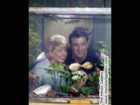 Doris Day - Any Way the Wind Blows