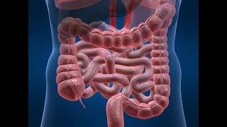 ★Как нормализовать работу кишечника.Трехнедельный курс очищения льняной мукой и кефиром