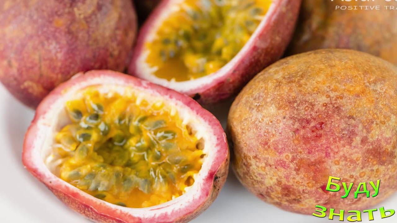 фрукт карамбола фото