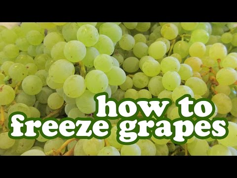 How To Freeze Grapes You Can Store Freezer - Freezing Seedle