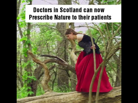 Doctors in Scotland can now Prescribe Nature to their Patients