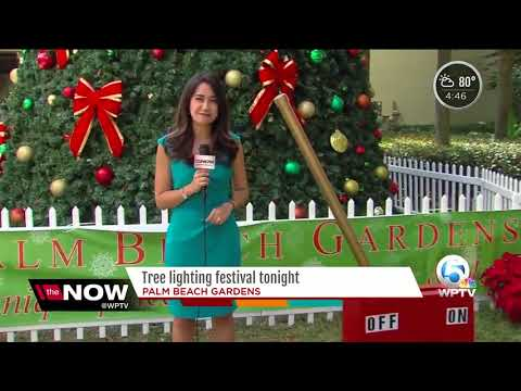 Tree lighting festival in Palm Beach Gardens