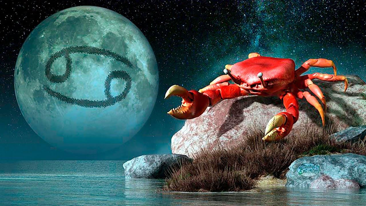 Телец и Рыбы: совместимость пары по классическому гороскопу