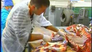 Проверно на себе изготовление колбасы.avi
