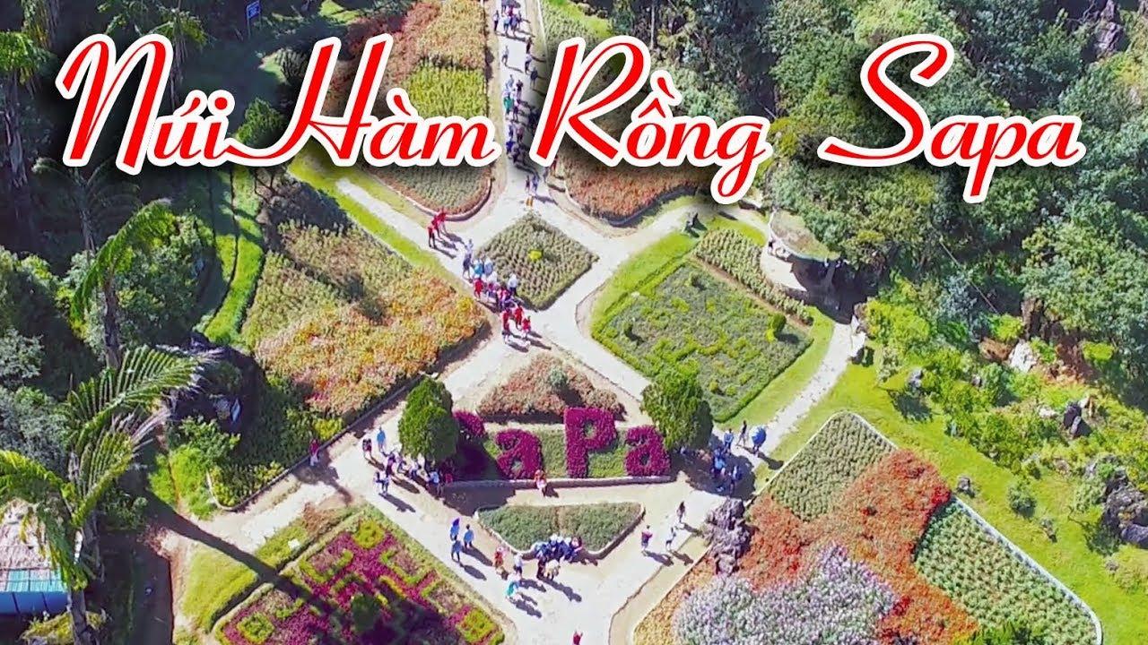 Du Lịch Sapa Hành Trình Leo Núi Hàm Rồng Cổng Trời Sân Mây Cùng Vietnam Tours