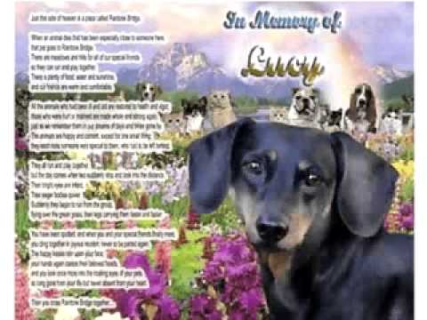 Dachshund Dog Memorial/Poem Personalized w/Pet's Name-Unique Pet-Loss Gift