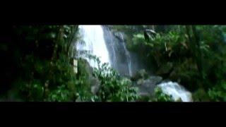 Alcione - Music: Taino Gold, Artist: Bague - Producer: Oliva - Puerto Rico