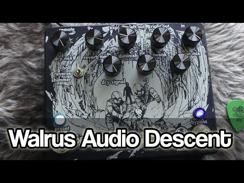 Walrus Audio Descent | Hall, Shimmer And Reverse Reverbs