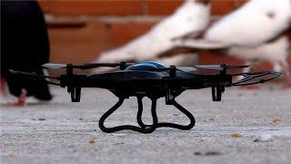 Taklacı Drone İncelemesi: Eachine H8C Mini Kameralı Drone