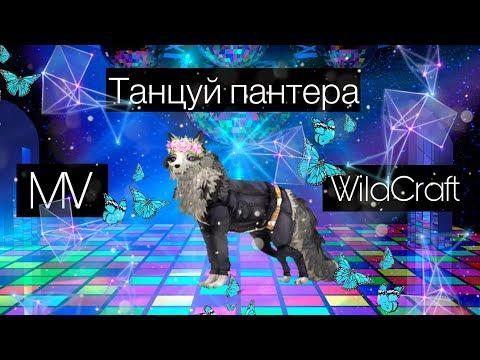 {WCMV}WildCraft||Wildcraft MV||Танцуй Пантера||
