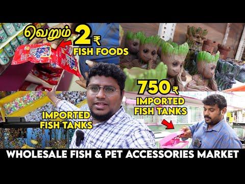 Cheapest Imported Fish Tanks 750₹ முதல்   2.5₹ Fish Foods & Pet Accessories   Kolathur Fish Market