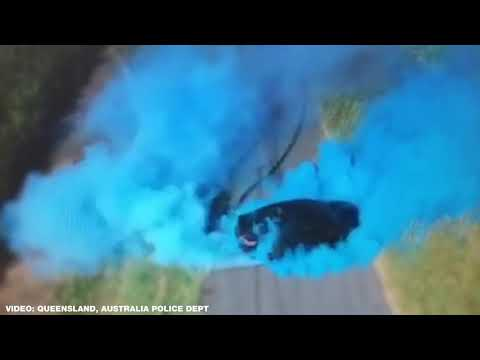 Mel Taylor - Gender Reveal GONE BAD! Ends with car on fire...