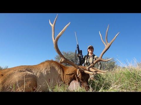 Melissa Bachman Elk- Old School Western Elk- Winchester Deadly Passion Season 3