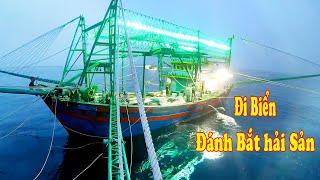 Gambar cover Đi Biển Đánh Bắt Hải Sản - Mẻ Chài Thập Cẩm Nhiều Loại Cá Mực/ Catch Seafood  #120