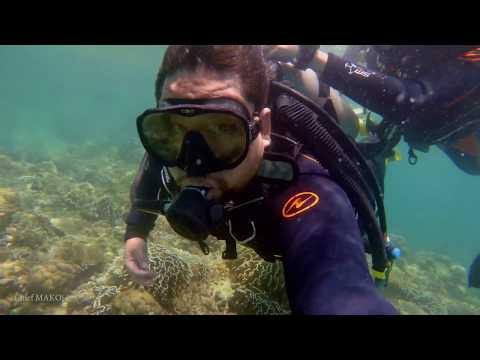 SCUBA Diving : Sisid Marino! | Seaman Vlog
