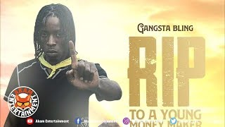 Gangsta Bling - Rip To A Young Money [Plain Truth Riddim] March 2019