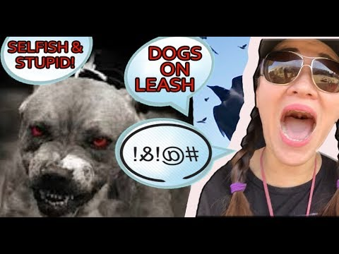 I'M REPORTING INCONSIDERATE DOG ONWERS THAT REFUSE TO LEASH THEIR DOGS!