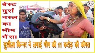 सुशीला किन्नर ने लगाई भीम की कीमत 11 करोड़ रुपये, Sushila has put a price of 110 million for Bheem