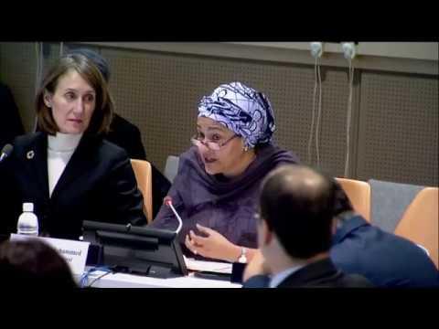 World Toilet Day 2017 - Amina J. Mohammed (Deputy Secretary-General)