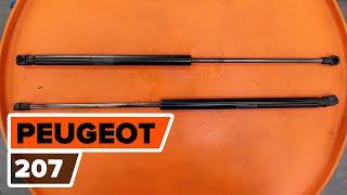 Vedligeholdelse PEUGEOT 207 (WA_, WC_) - videovejledning