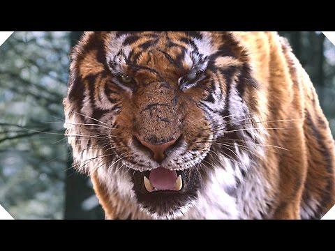 Random Movie Pick - THE TIGER Movie TRAILER (Action, Adventure - 2016) YouTube Trailer