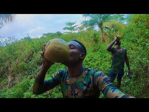 Surviving in The Wild | Land Crab Catch N Cook