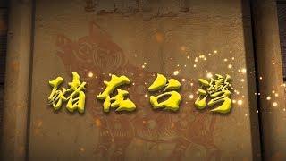 【台灣演義】#豬在台灣 2019.07.14 | Taiwan History