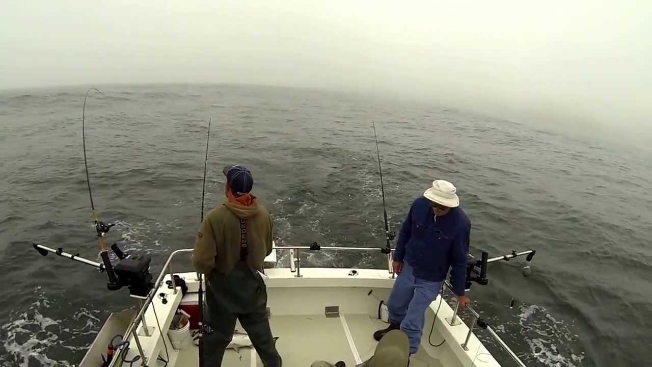 Bodega bay fishing report autos post for Salmon fishing bay area